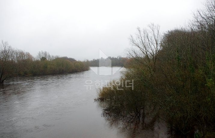 학교안에 위치한 강